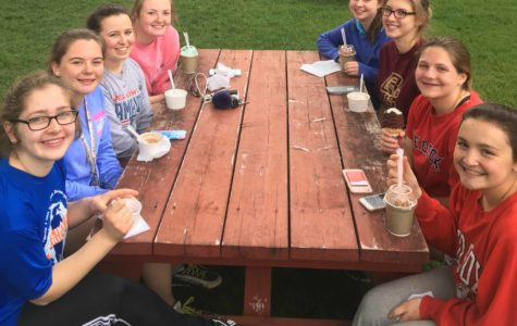 Softball 2017: Overcoming Challenges & Building Team
