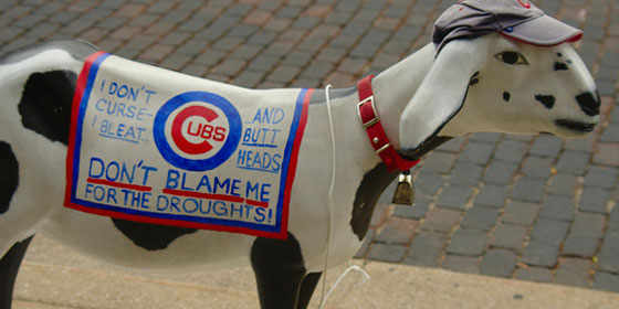 Cubs win World Series and Red Sox Fans Empathize