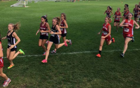 Montrose Cross-Country: Personal Reflections on Early Season Experiences