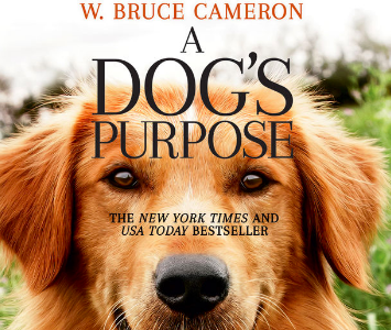 Movie Review: A Dog's Purpose