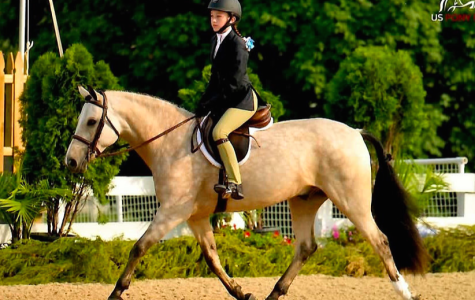 Feature: Montrose's Equestrians Ride to Success