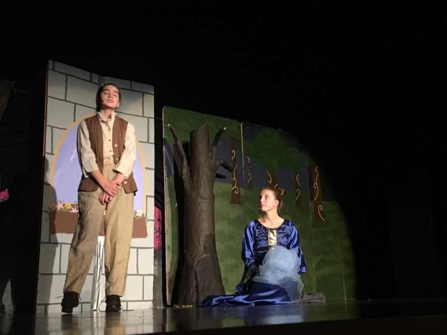 Don't Miss the Middle School Musical: Twelve Dancing Princesses – Nov 17 & 18 at 7 PM