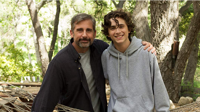 "Teen Addiction Put in Perspective: Movie Review of ""A Beautiful Boy"""