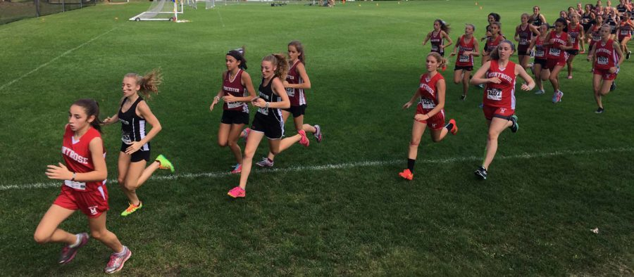 Montrose+Cross-Country%3A+Personal+Reflections+on+Early+Season+Experiences